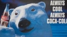 prikaznata za polarnite mecinja